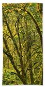 Oregon Rainforest Beach Towel