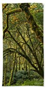 Oregon Rainforest Green Beach Towel
