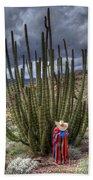 Organ Pipe Cactus The Visitor 1 Beach Towel