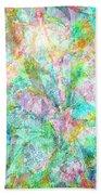 Organic Colors By Jan Marvin Beach Towel