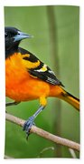 Oriole Perched Beach Towel