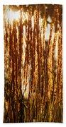 Ornamental Golden Grass Beach Towel