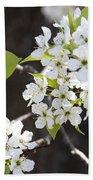 Ornamental Pear Blossoms No. 1 Beach Towel