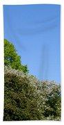 Ornamental Skyline Beach Towel