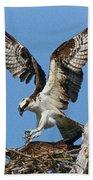 Osprey Mating Beach Towel