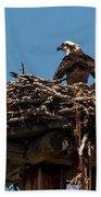 Osprey Nest Beach Towel