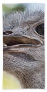 Ostrich Bokeh V2 Beach Towel