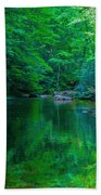 Otter Creek Reflection  Beach Towel