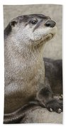 Otter North American  Beach Towel