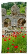 Our Entry Into Ephesus And Its Baths-turkey Beach Towel