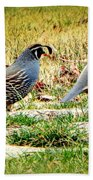 Out For A Walk Beach Towel