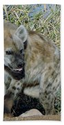 Out Of Africa  Hyena 2 Beach Towel