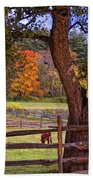 Out To Pasture Beach Towel by Joann Vitali