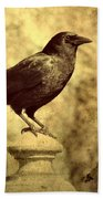 The Raven's Outlook Beach Towel