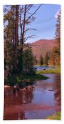 Outstanding Yellowstone National Park Beach Towel by John Malone