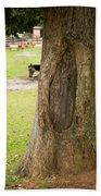 Oval Tree Art Beach Towel