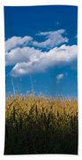 Over The Grass Beach Towel