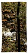 Over The River And Thru The Wood Beach Towel