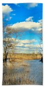 Over The Waters Beach Towel