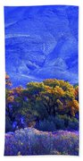 Owens Valley Fall Colors  Beach Towel