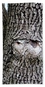 Owl Face Beach Towel