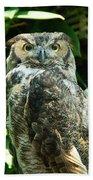 Owl Portrait Beach Towel