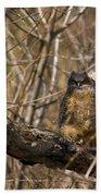 Owlets Beach Towel