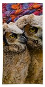 Owlets In Color Beach Towel