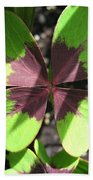 Oxalis Deppei Named Iron Cross Beach Towel