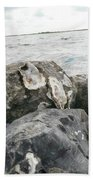 Oysters On The Rocks Beach Towel