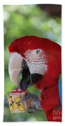 P Is For Parrot Beach Towel