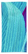 P4240195 - Eye Lens Fiber  Beach Towel by Spl