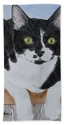 Pablo The Cat Beach Towel