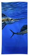 Pacific Sailfish Beach Towel