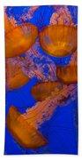 Pacific Sea Nettle Cluster 2 Beach Towel