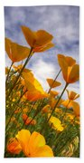 Paint The Desert With Poppies  Beach Towel