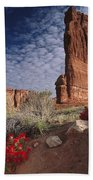 Paintbrush And The Organ Rock Beach Towel by Tim Fitzharris
