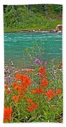 Paintbrush By Bow River In Banff Np-ab Beach Towel