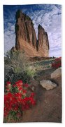 Paintbrush And  Organ Rock Beach Towel