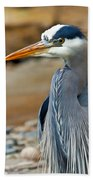 Painted Blue Heron Beach Towel