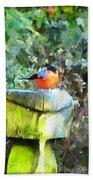 Painted Bullfinch S1 Beach Towel