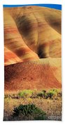 Painted Hills And Grassland Beach Towel