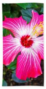 'painted Lady' Hibiscus Beach Towel