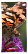 Painted Lady On Butterfly Bush Beach Towel by William Selander