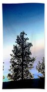 Painted Pine Tree Trio Beach Towel