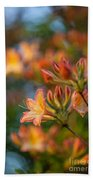 Painterly Rhodies Beach Towel