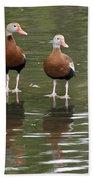 Pair Black-bellied Whistling-ducks Beach Towel