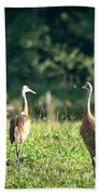 Pair Of Cranes Beach Towel