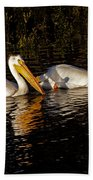 Pair Of Pelicans   #6935 Beach Towel