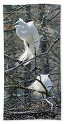 Paired Egrets At Lake Martin Louisiana Beach Towel